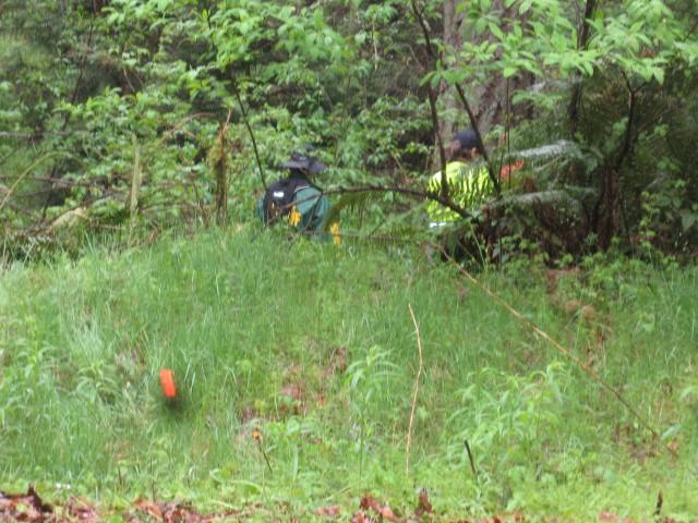 Cossey, homicide, KCSAR in woods, 4. 27. 13