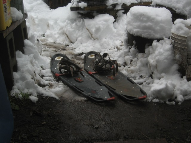 super-bowl-snow-dig-out-2-6-17-2