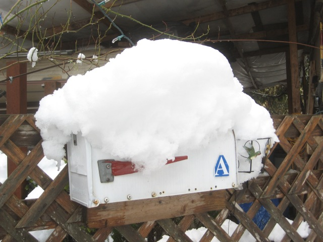 super-bowl-snow-dig-out-2-6-17-7