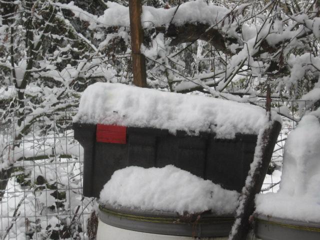 super-bpwl-snow-2-5-17-10