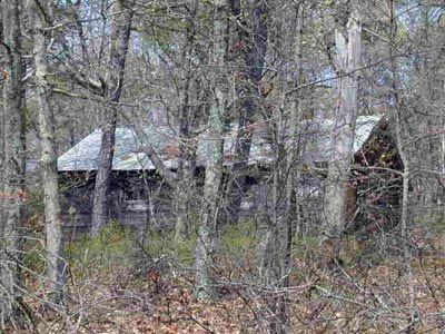 Wauwepex, buckskin-cabin-2000, cabin in the woods