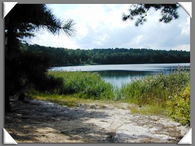 Wauwepex, Deep Pond, white sand, cw-2001