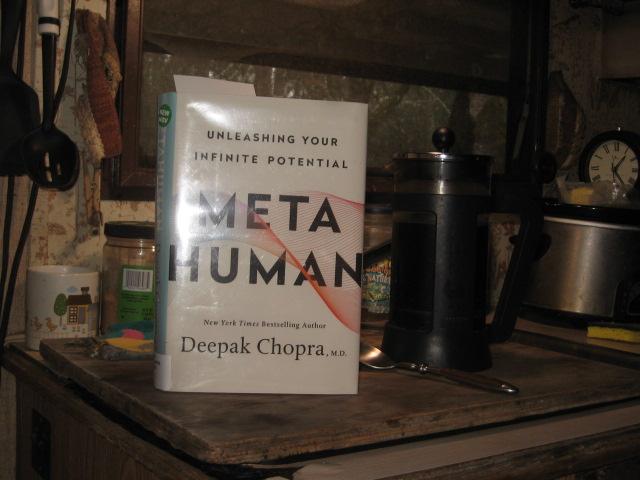 Covid, Meta Human (1)