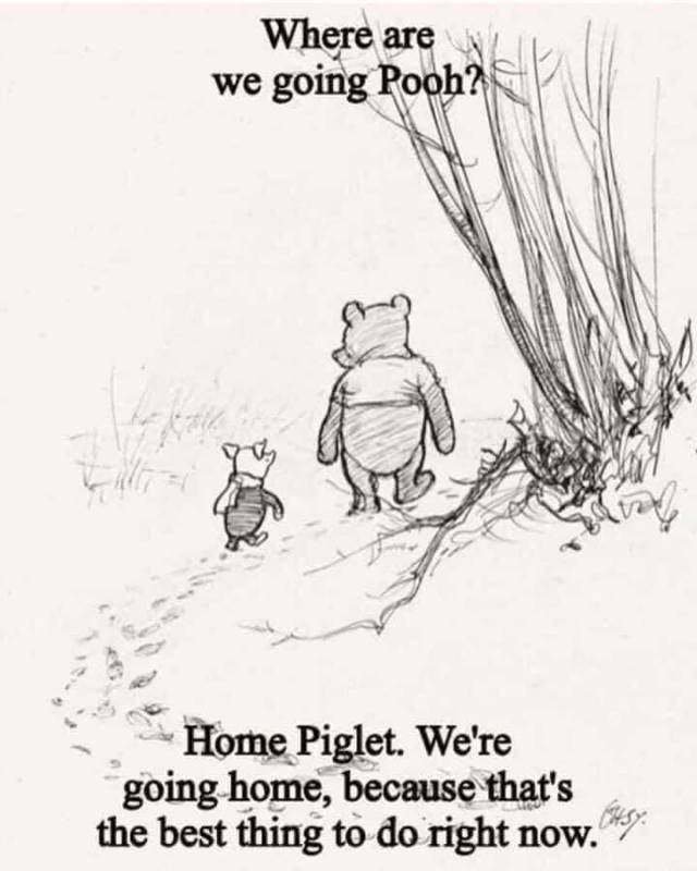 Covid pix, Pooh and piglet going home