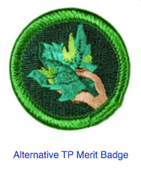 Covid pix, Alternative Merit Badge
